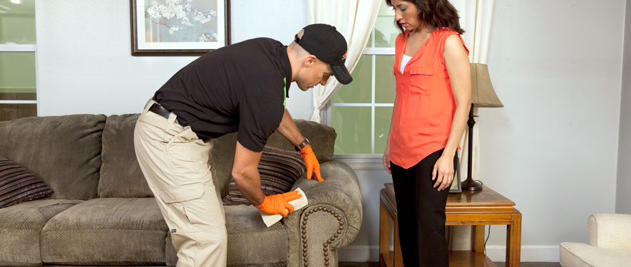 Silver Spring, MD carpet upholstery cleaning