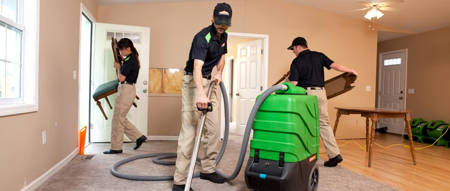 Silver Spring, MD cleaning services